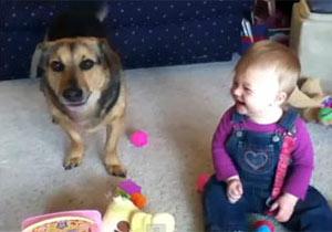 犬にバカウケする赤ちゃん