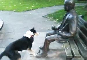 銅像になつく犬