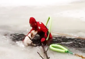 氷にはまった犬を救出