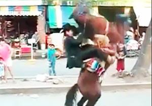 馬のジャンプ失敗