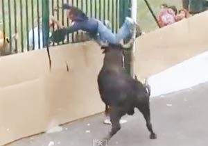 ポルトガルの闘牛祭り