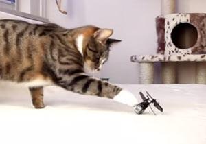 ラジコンヘリに猫パンチ