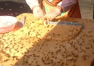 ミツバチがたかりまくりの屋台