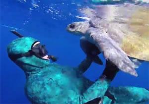 ダイバーに感謝するように寄り添うウミガメ