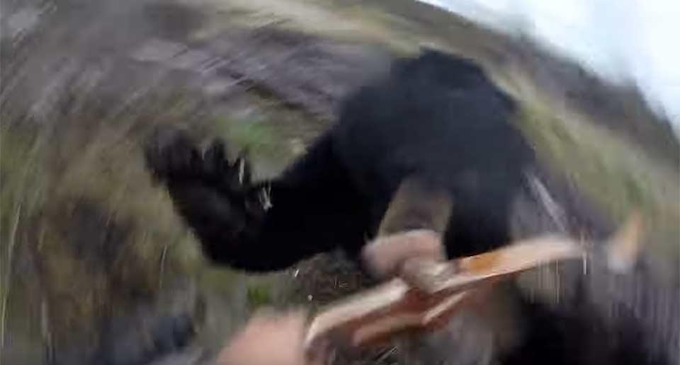 ツキノワグマに襲われる瞬間