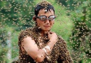 蜂まみれコンテスト