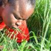 雑草を食べる信者