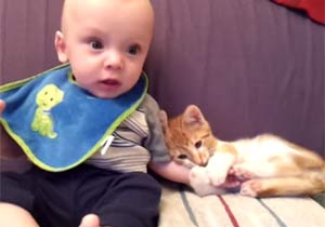 赤ちゃんの腕をギュッとつかむ子猫
