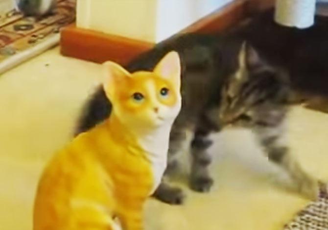 陶製の猫に困惑する子猫